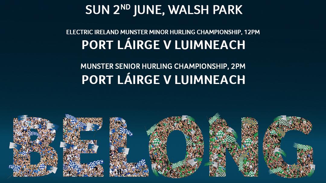 2019 Munster Senior Hurling Championship – Limerick 2-24 Waterford 0-10