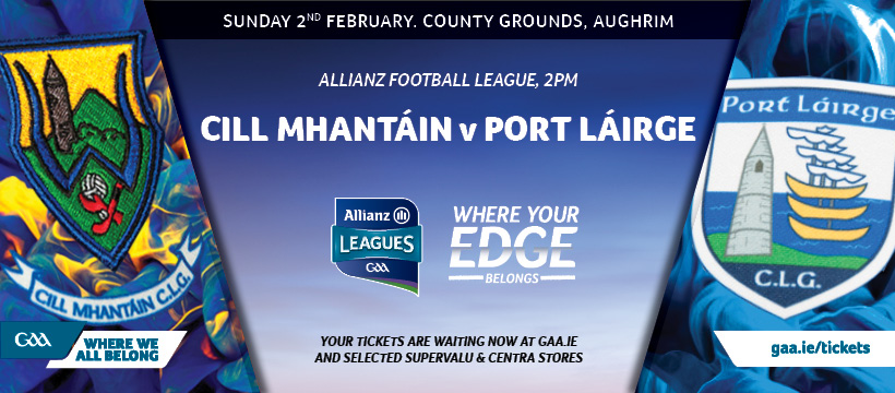 2020 Allianz Football League Division 4 – Wicklow 2-11 Waterford 1-6